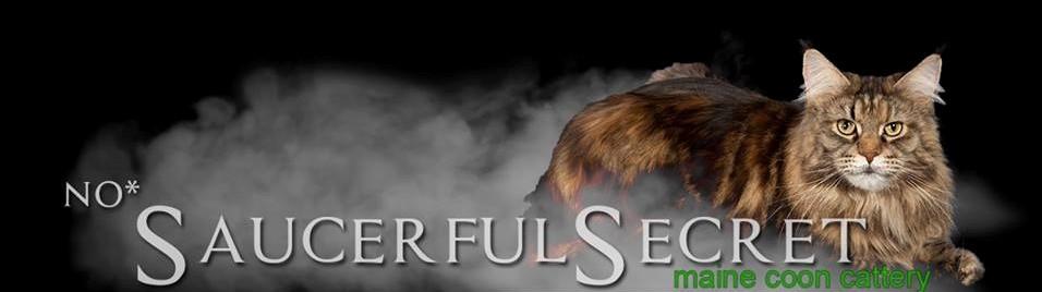 SaucerfulSecret